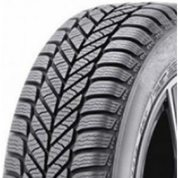Anvelopa Iarna DIPLOMAT WINTER ST 205/65 R15 94T